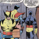 Whiney Wolverine